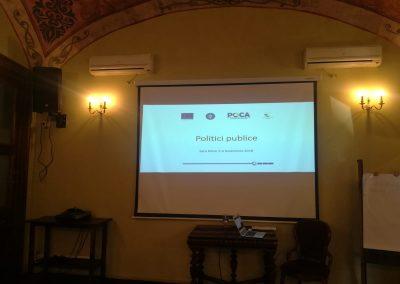 Politici Publice Satu Mare - 1