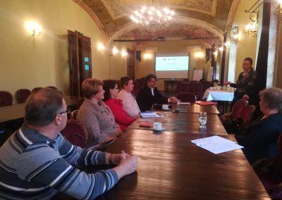 Politici Publice Satu Mare - 2