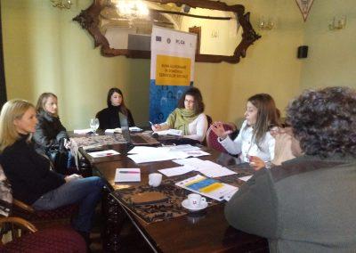 Reuniune Grup de lucru Satu Mare - 4